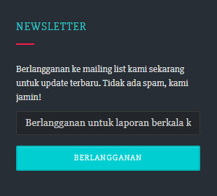 Footer Newsletter